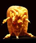 Villafane Pumpkin Carving medusa
